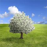 gruenesgeld24.de Basisrente