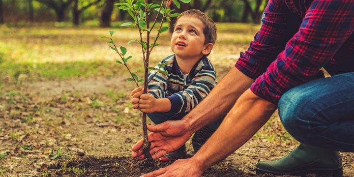 So können Sie ethisch und ökologisch investieren