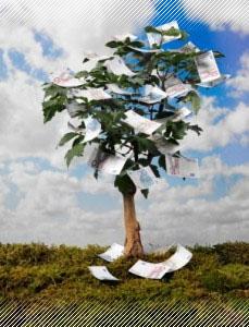 Auswahl an über 300 nachhaltigen Finanzprodukten