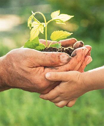Eine nachhaltige Anlage ist sicher und denkt auch an die kommenden Generationen © UDI
