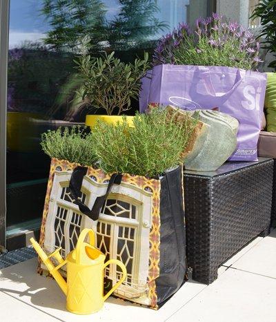 Der neue Trend beim Urban Gardening