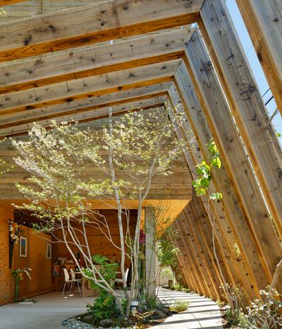 Wie man aus Holz eine Entspannungsoase schafft