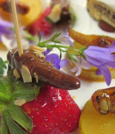 Insekten schmecken und sind gesund