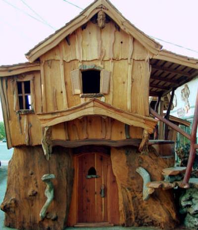 Baumhäuser wie aus dem Wald der Grimms