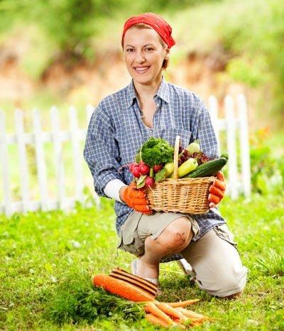 Biologischer Gartenbau: Das müssen Sie beachten