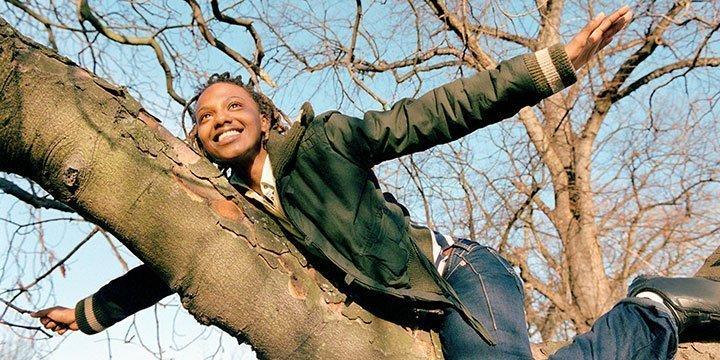 Kraft der Bäume und ihre heilende Energie