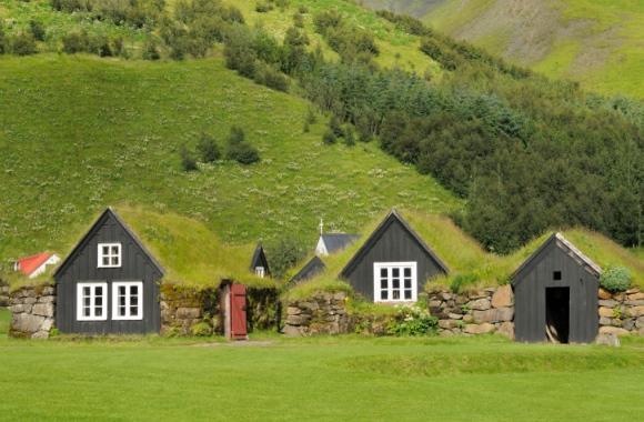 Dachbegrünung verbessert die Wohnqualität und schafft Mehrwerte