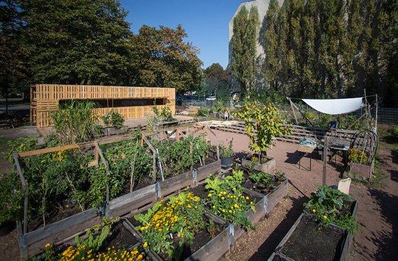 Urban Gardening und nachhaltige Architektur