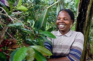 So nutzt fairer Kaffee Produzenten und Genießern
