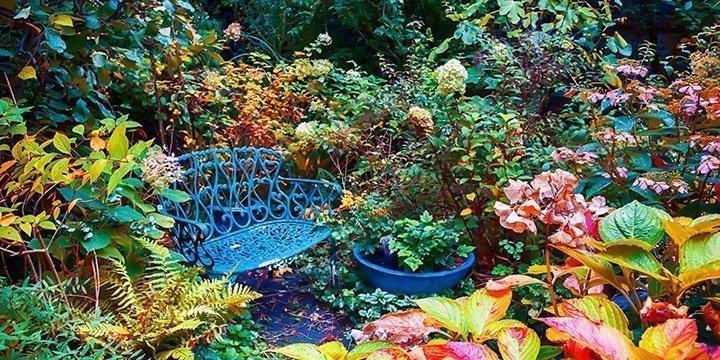 Garten im Herbst: Was ist jetzt zu tun?