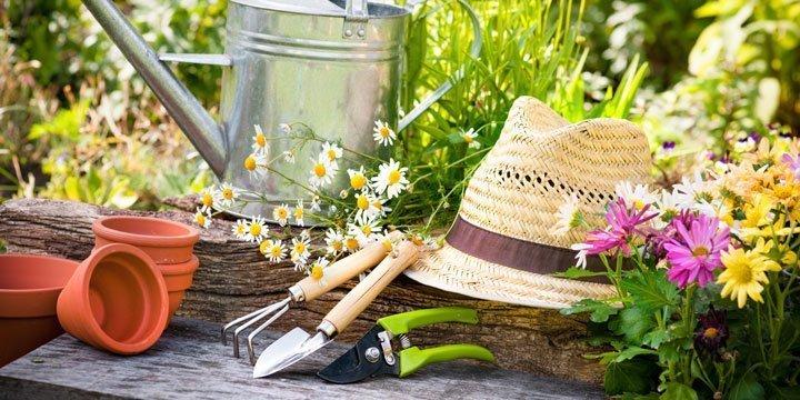 Natürliche Frühjahrskur für Garten und  Balkon