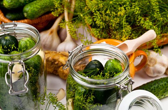 Gurken einlegen und einmachen leicht gemacht: Leckere Gewürzgurken