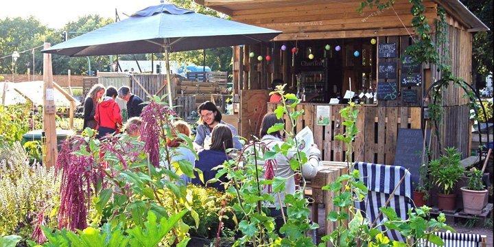 Urbaner Garten himmelbeet in Berlin feiert ersten Geburtstag mit Sommerfest
