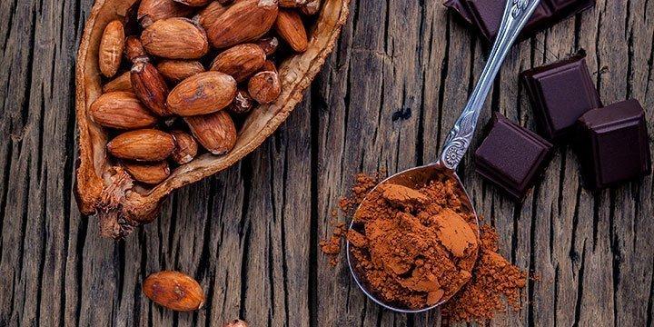 Nachhaltiger Schokoladen-Genuss ohne Zucker