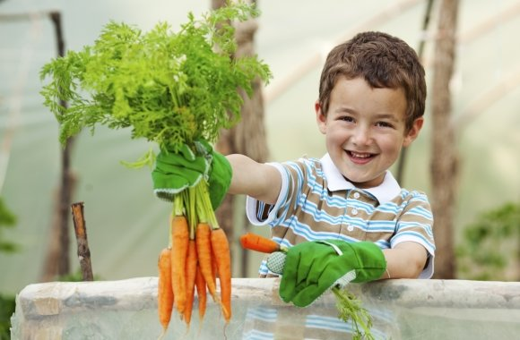 Lernort Bauernhof: Ein nachhaltiges Projekt für Schulkinder