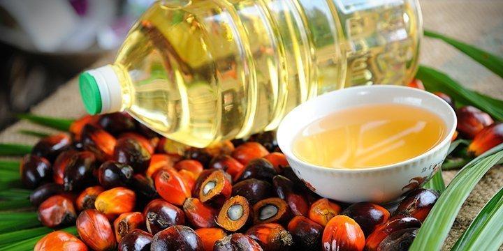 10 Tipps zum Thema Palmöl vermeiden von Yvonne Willicks