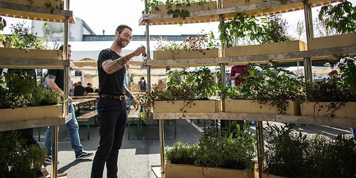 Urban Farming : Gemüse auf dem Dach anbauen
