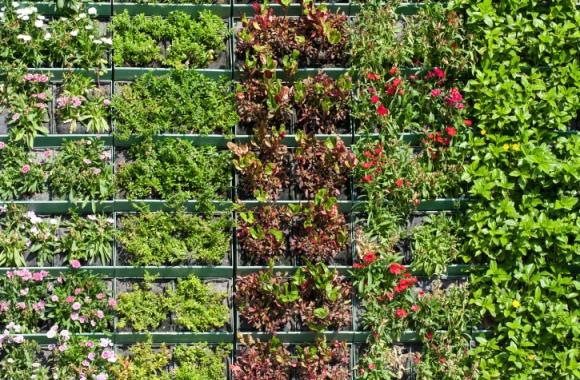 Design-Innovativon macht Wohnung und Balkon zum Mini-Garten