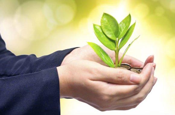 Transparenz bei Triodos Bank: Zahlreiche nachhaltige Wirkungen in Geschäftsbericht