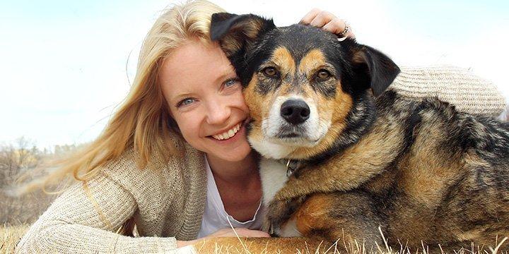 Hunde helfen bei Erforschung von Brustkrebs