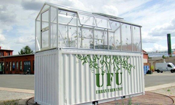Schrebergarten 2.0: Wie Obst und Gemüse lokal produziert werden kann