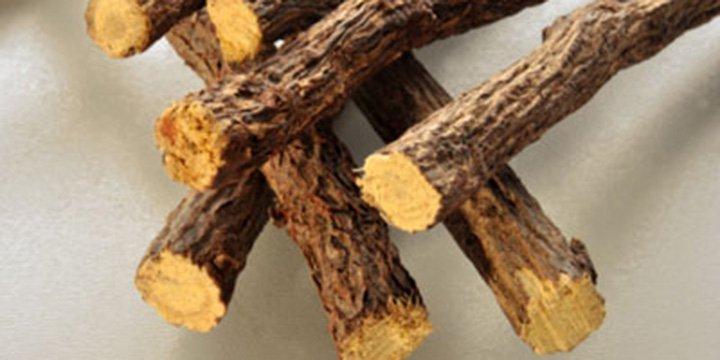 Süßholz: Arzneipflanze 2012