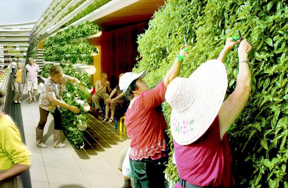Urban Gardening 2.0