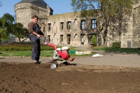 Urban Gardening, nachhaltiges Konzept macht Andernach zur essbaren Stadt