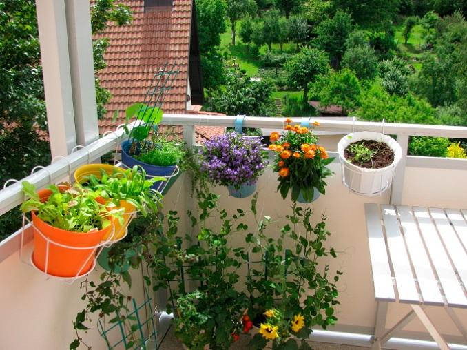 balkonpflanzen balkon gestalten urban gardening. Black Bedroom Furniture Sets. Home Design Ideas
