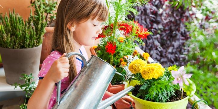 Mit diesem Jahresplan wird dein Balkon zur grünen Oase