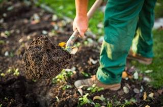 7 Tipps für einen Traumgarten - Bio Dünger selber machen