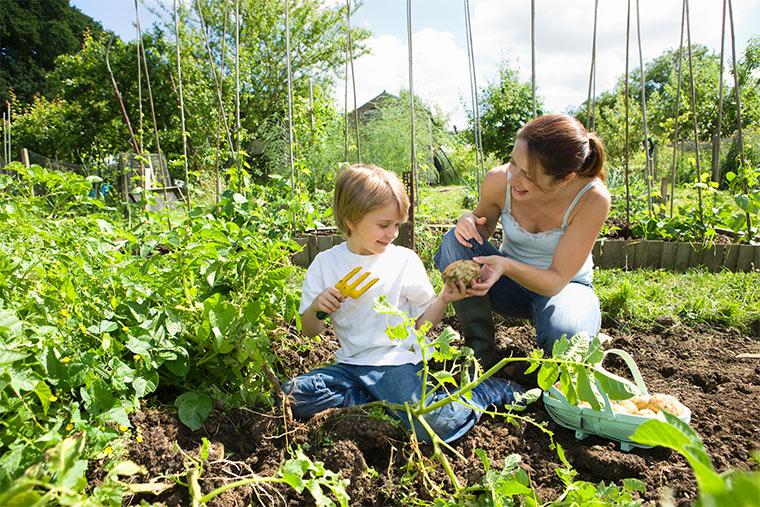 Biogarten anlegen