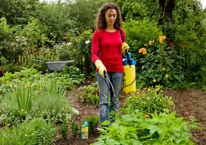 Die unbedenkliche Schädlingsbekämpfung kann auch großflächig im Garten angewendet werden © Neudorff
