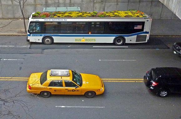 Bepflanzte Busse machen die Stadt grüner