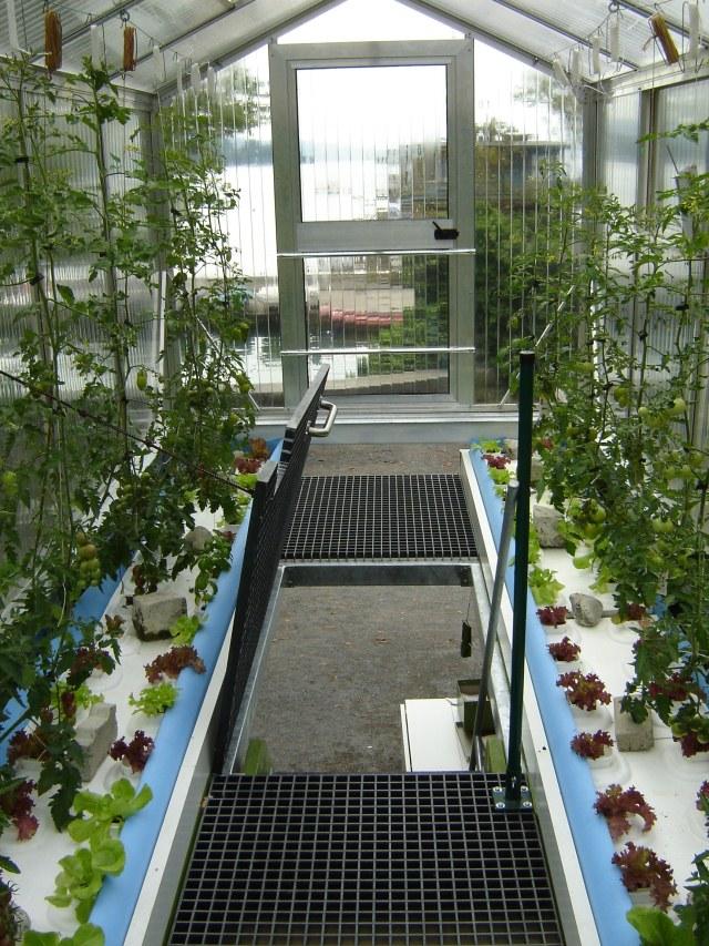 Schrebergarten 2.0: Urban Gardening mit Urban Farm Unit