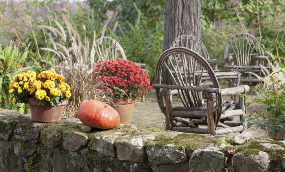 arbeiten im garten und auf dem balkon im november und dezember. Black Bedroom Furniture Sets. Home Design Ideas