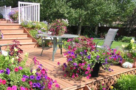 Garten Tipps und Gartenarbeiten im Mai.