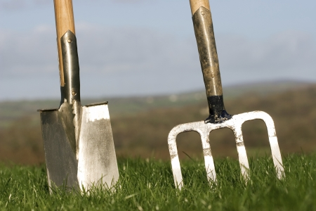 Die wichtigsten Gartengeräte für die Gartenarbeit und Pflege Gartengeräte