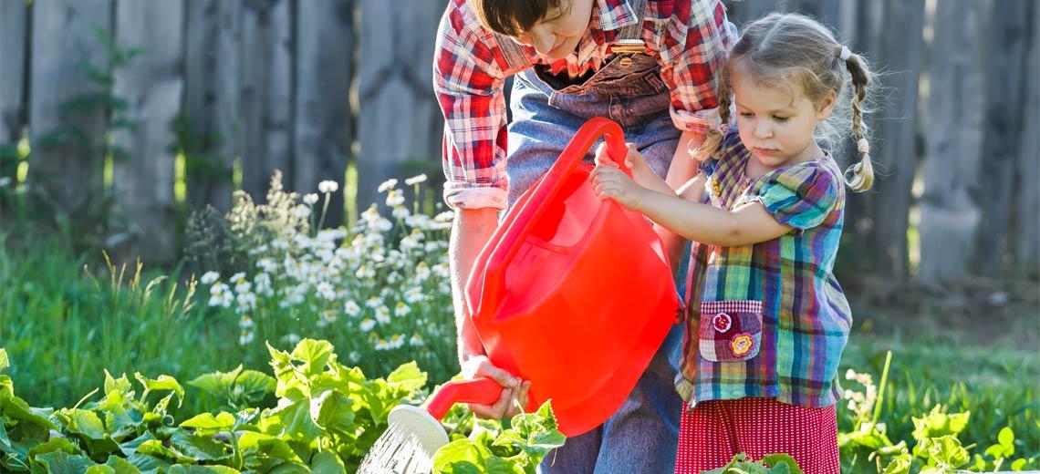 5 Fehler in der Gartenpflege und wie man sie vermeidet
