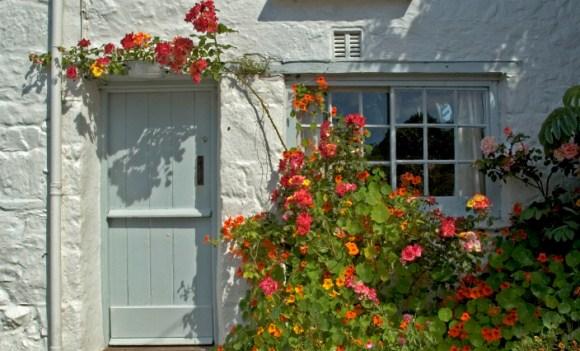 Tipps für Garten und Balkon im Juni: Der Sommer kann kommen