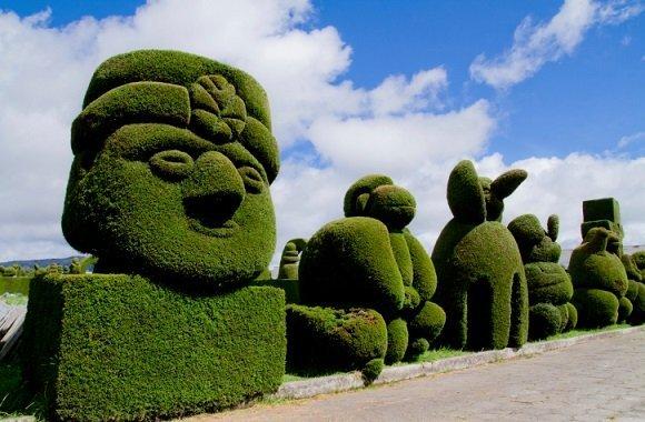 Hecken schneiden leicht gemacht: Brite gestaltet Heckenpflanze zu Drachen