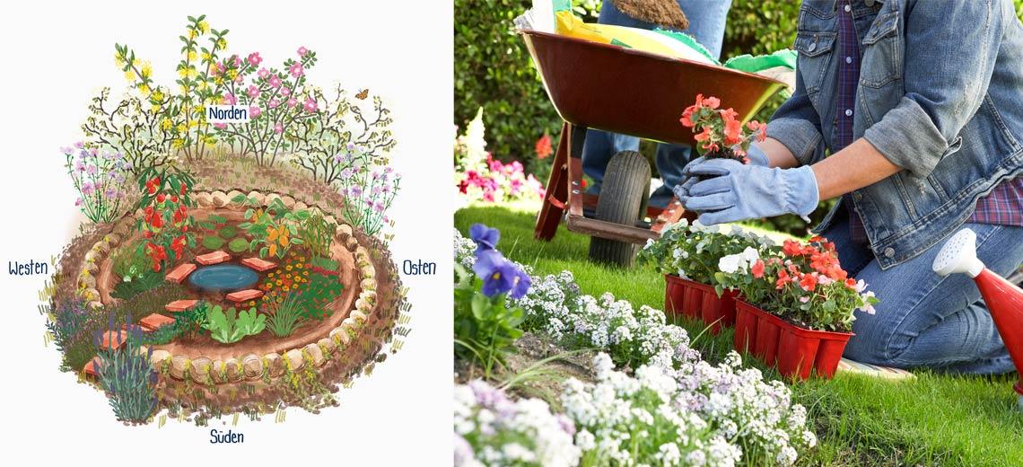6 Tipps für's gärtnern in Zeiten des Klimawandels