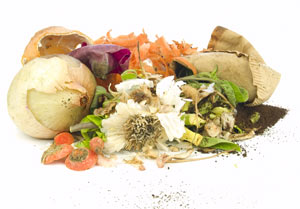 Kompost als Bio Dünger selber machen