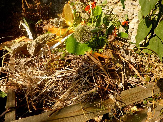 Biokompost mit Holzrahmen