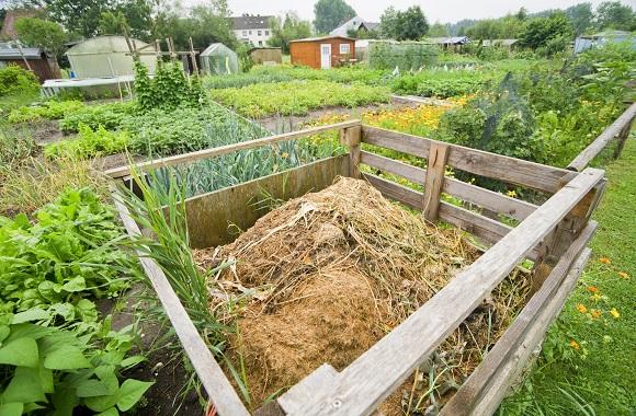 Anleitung zum richtigen Kompostieren im Garten