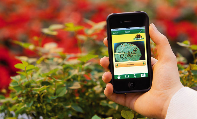 Keine kranken Pflanzen mehr mit der Pflanzendoktor-App