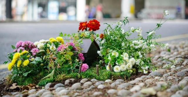 Urban Gardening vom Pothole-Gardener