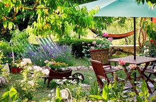 So bleibt ihr Garten bei der Sommerhitze fit