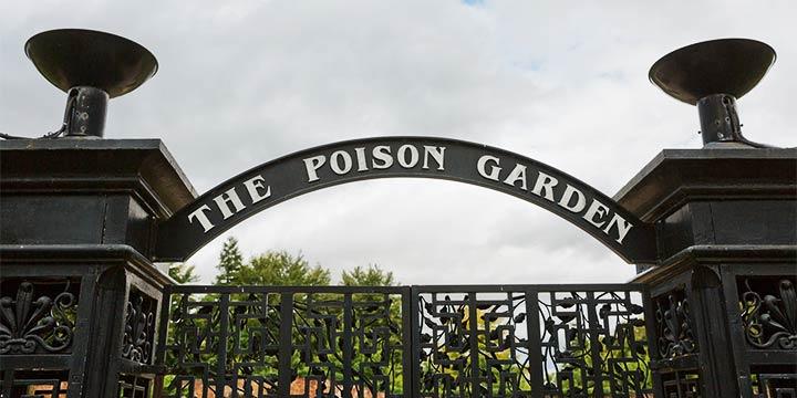 Der giftigste Garten der Welt