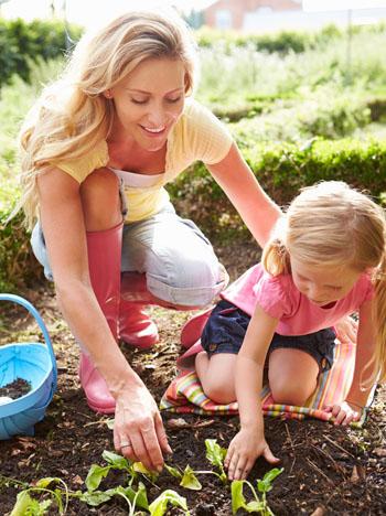 Die Mehrheit der Deutschen legt Wert auf Bio-Qualität in ihrem Garten.
